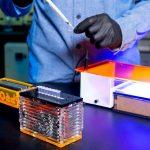 Come fare la PCR per moltiplicare il DNA